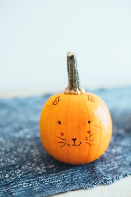 Cute-Sharpie-Cat-Face-Pumpkin