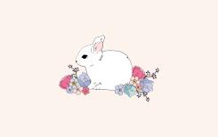 springbunny_widescreen2