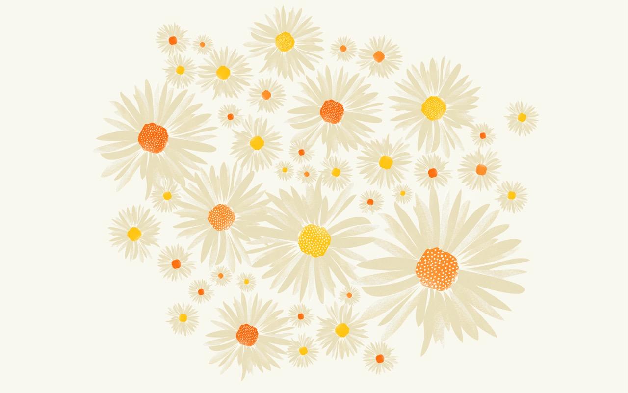 CWILP__daisies-02