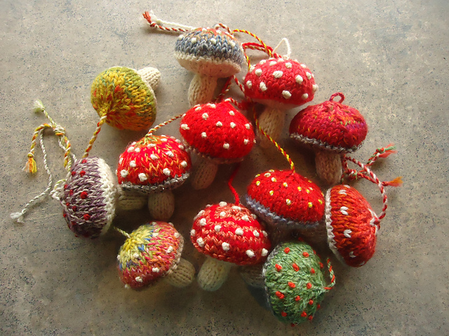 This image has an empty alt attribute; its file name is mushrooms_2-26-15_012_medium2.jpg
